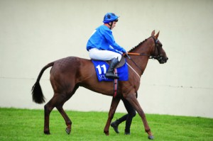 469Here Comes Molly (NCorkery)